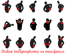 Dolor inflamatorio vs mecánico